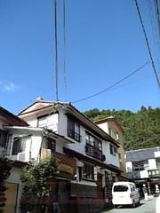 200610081